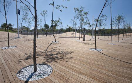 Thermowood fa a jelenleg ismert legkevésbé vetemedő faanyag, mert a hőkezelés végett a fa sejtjei megégnek így össze zsugorodnak, ami azt eredményezi, hogy vizet csak legminimálisabban vesznek fel.